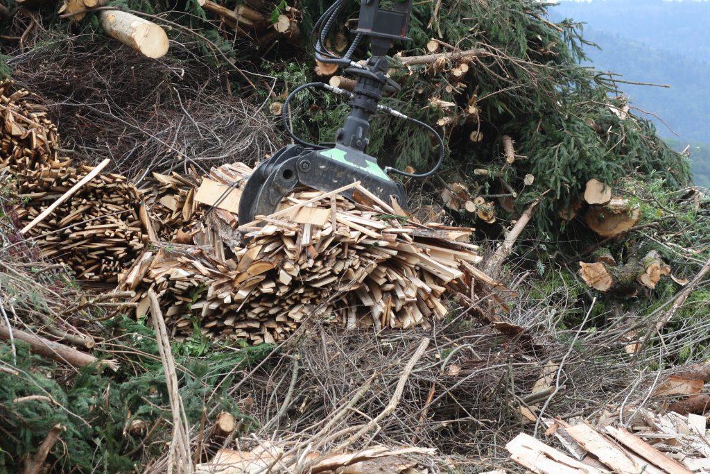 restos de árboles para biomasa