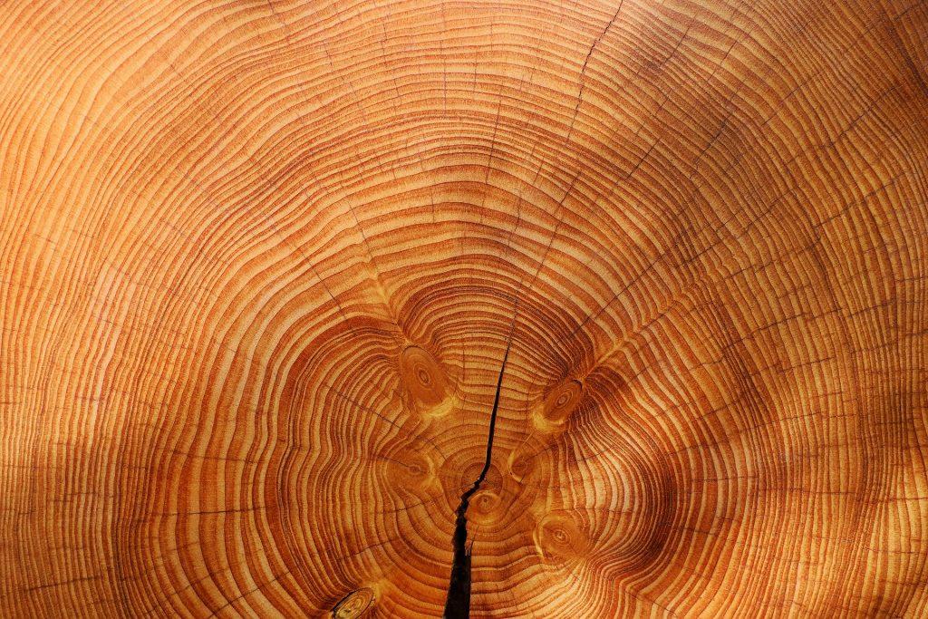tipo madera aserrada