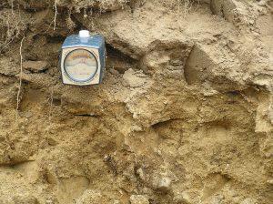 Comprobación del Ph del suelo