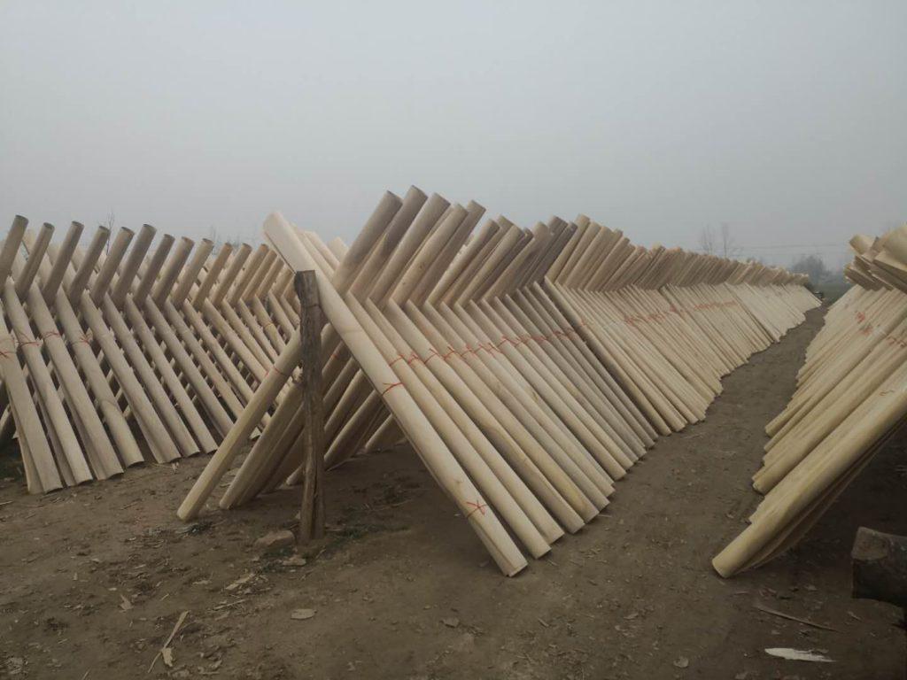 chapa de paulownia madera