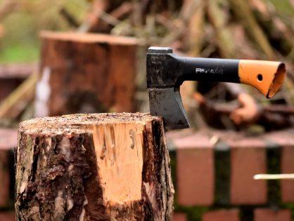 Wood properties