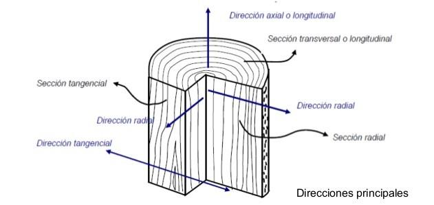 principales-direcciones-de-la-madera
