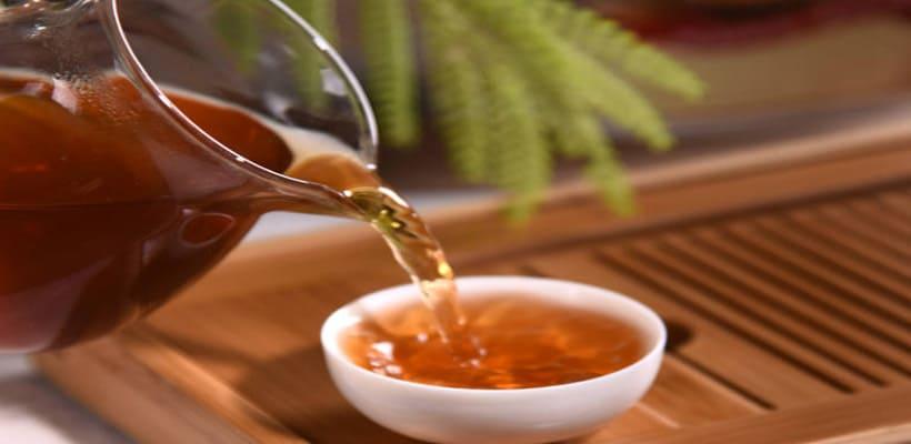 paulownia honey