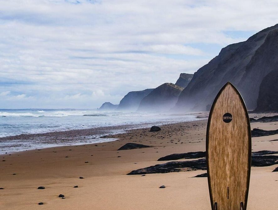 Paulownia tabla de surf